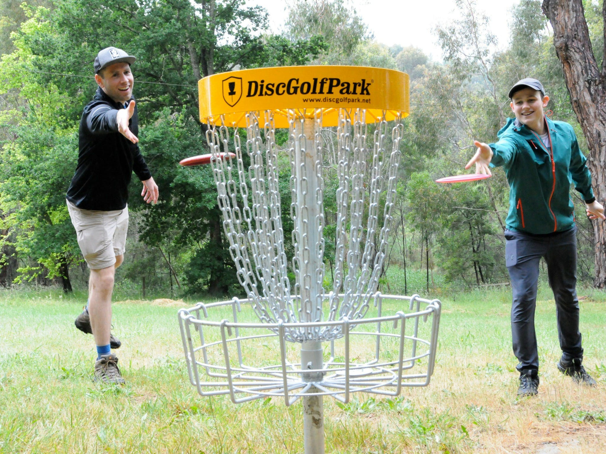 Disc Golf - Tourism Cairns