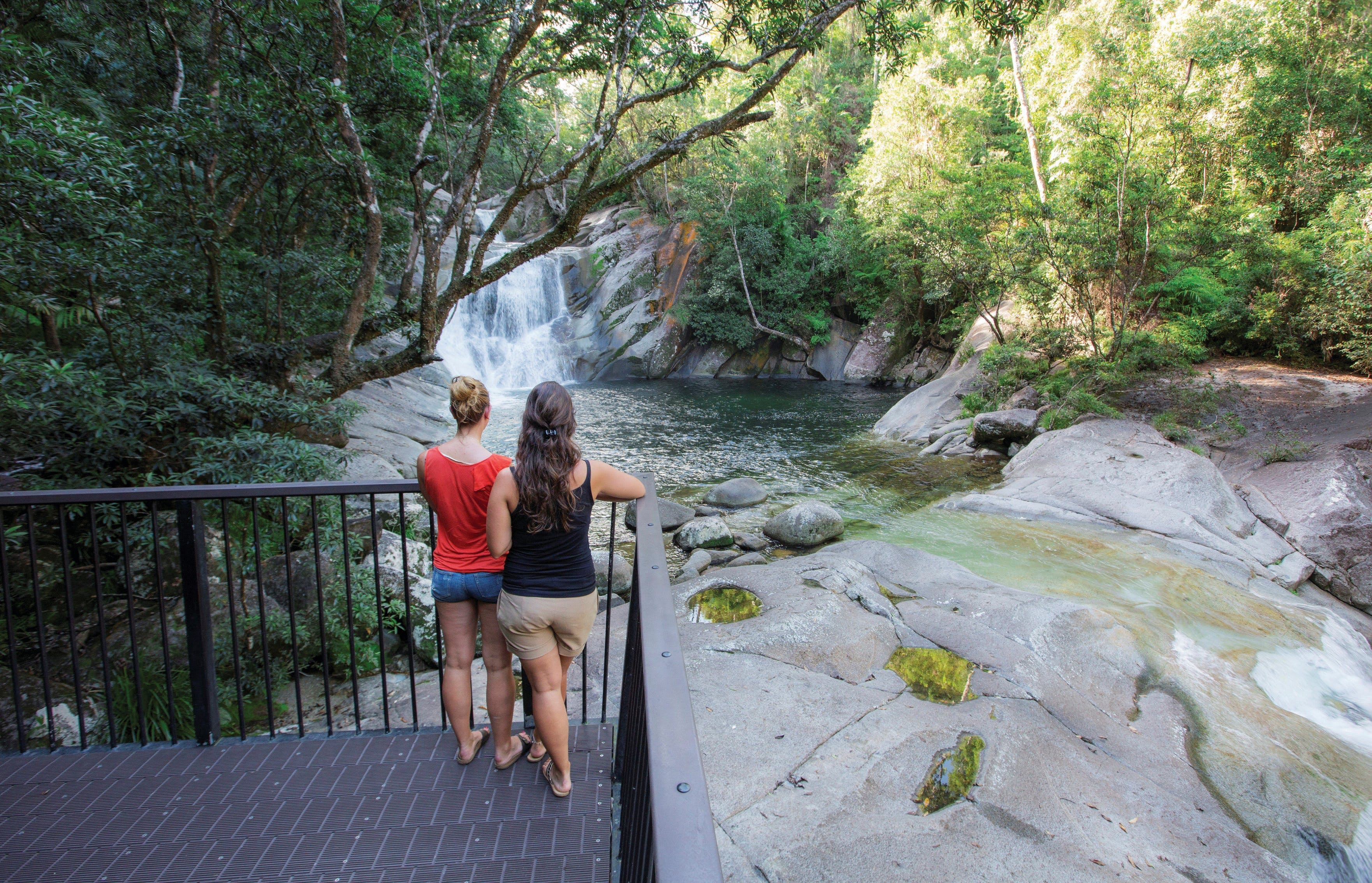 Josephine Falls walking track Wooroonooran National Park - Tourism Cairns