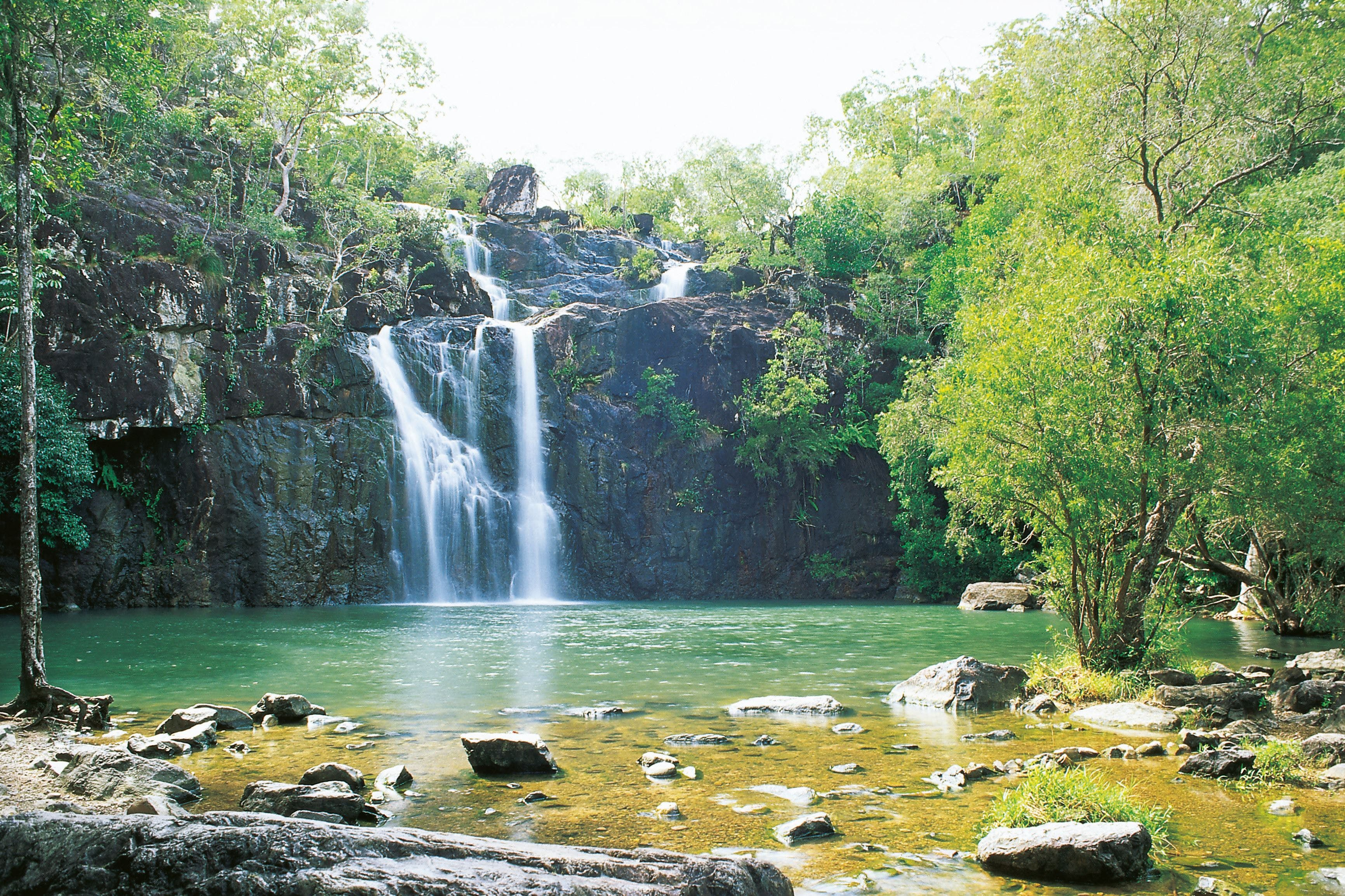 Cedar Creek Falls - Tourism Cairns