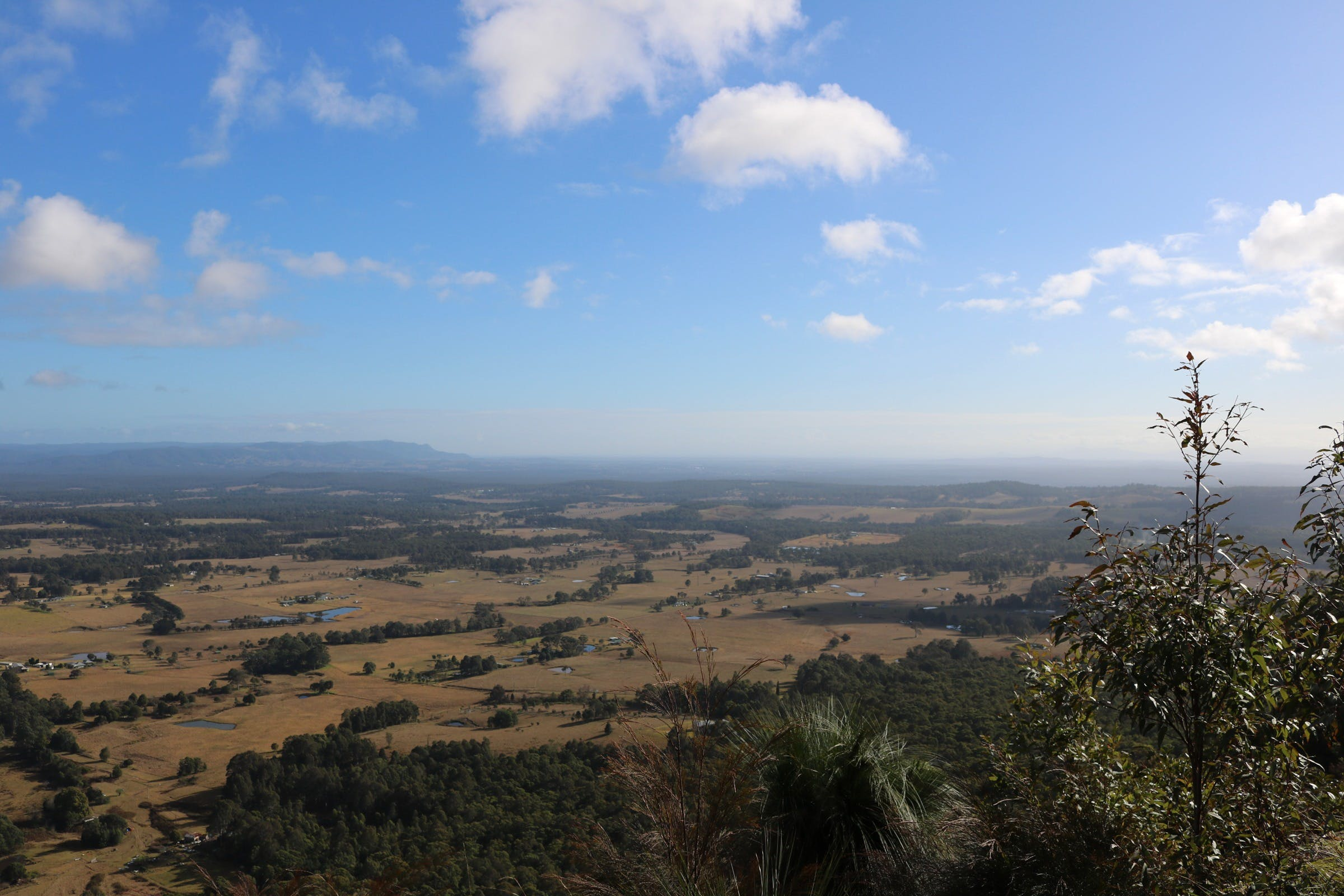 Heaton State Forest - Watagan Mountains - Tourism Cairns