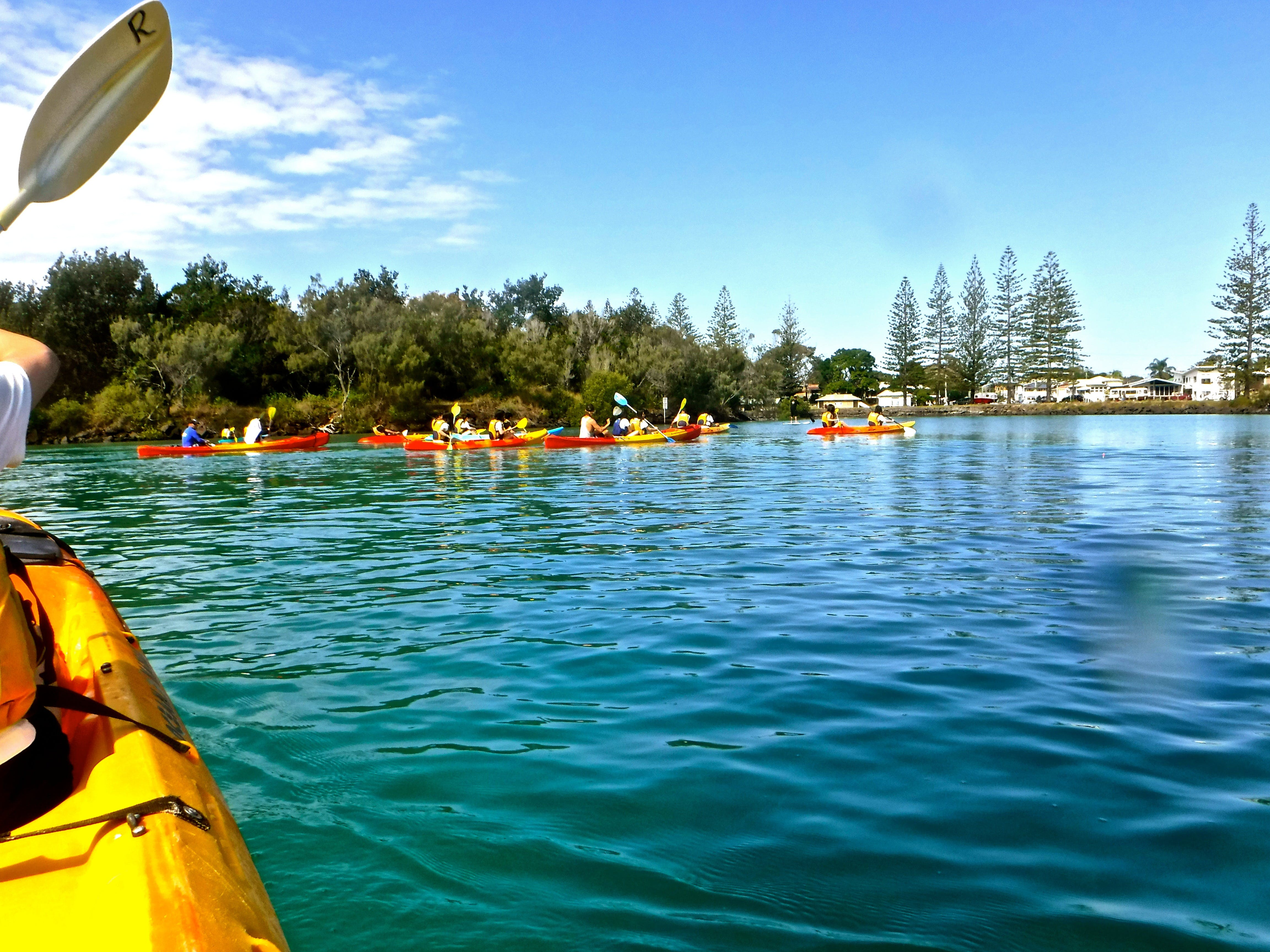Byron Bay River Nature Kayak Tour - Tourism Cairns
