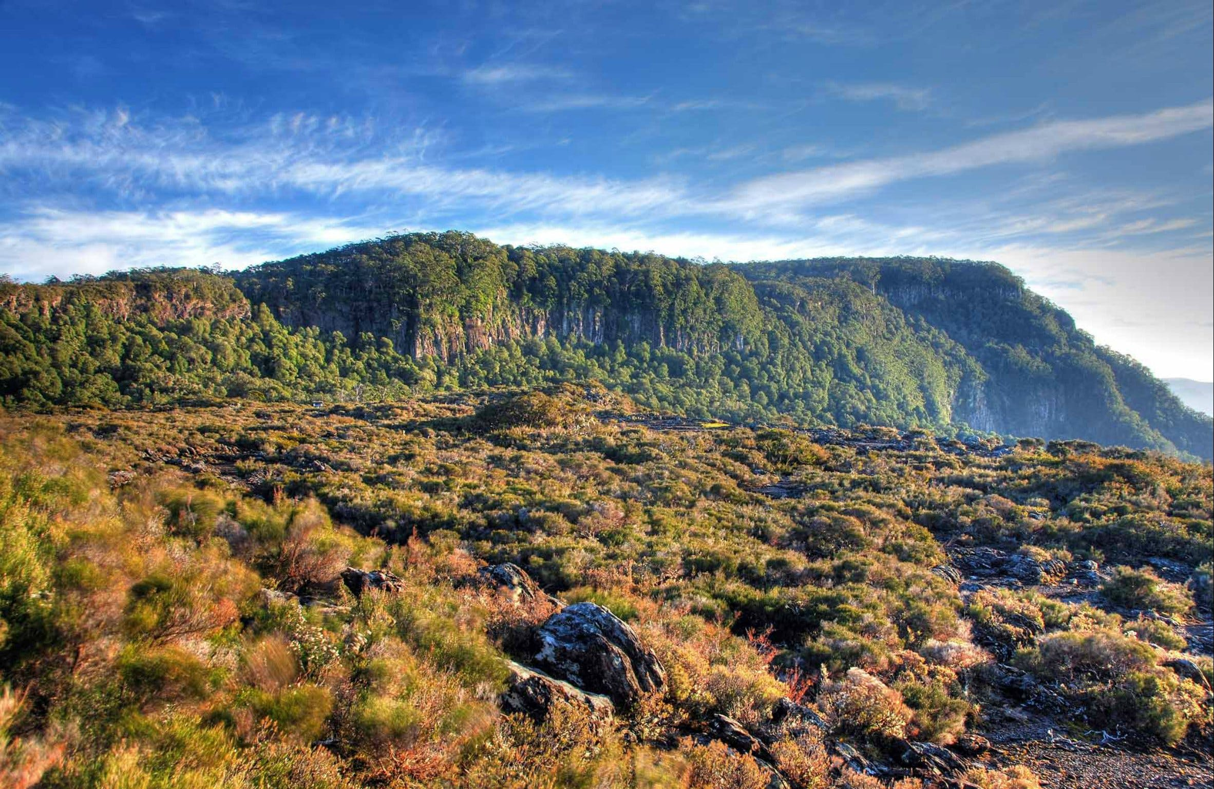 New England National Park - Tourism Cairns
