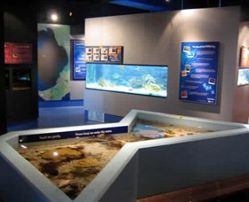 Marine and Freshwater Discovery Centre - Tourism Cairns