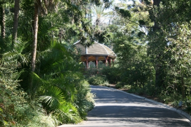 Royal Botanic Gardens Victoria - Tourism Cairns