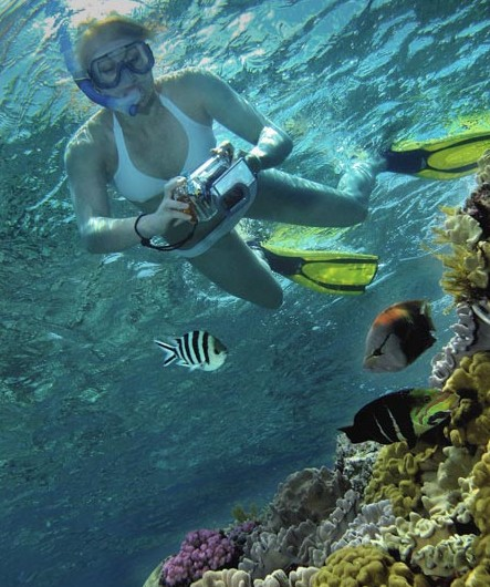 Calypso Reef Charters - Tourism Cairns