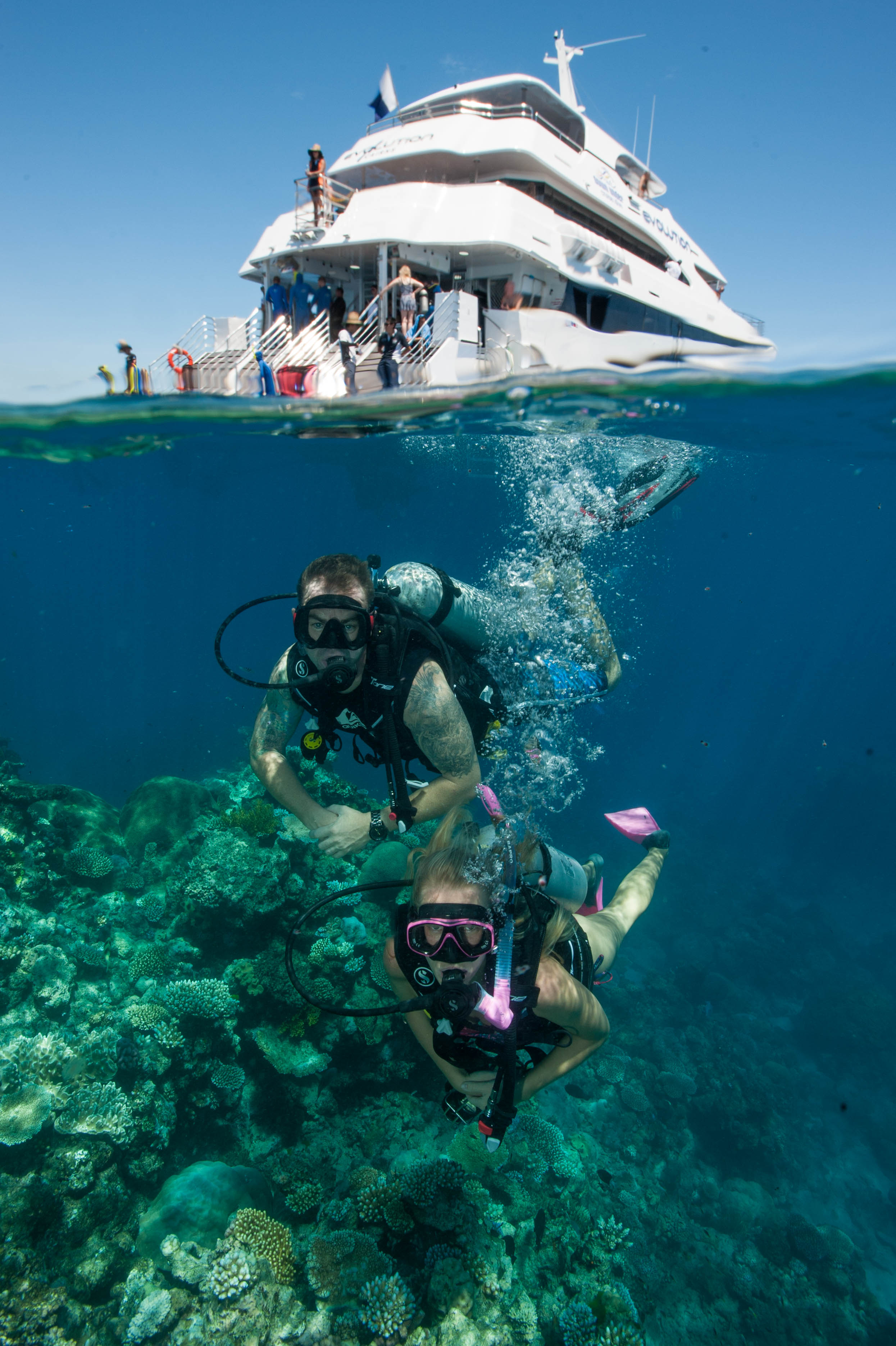 Down Under Cruise and Dive - Tourism Cairns
