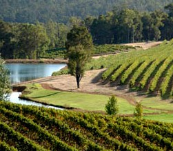 Brookhampton Estate Vineyard - Tourism Cairns