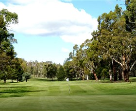 Cooma Golf Club - Tourism Cairns