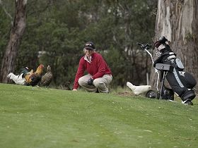 Tasmania Golf Club - The - Tourism Cairns