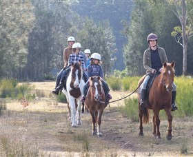 Horse Riding at Oaks Ranch and Country Club - Tourism Cairns