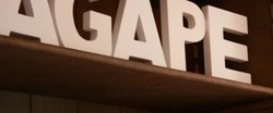 Agape Organic Restaurant  Bar - Tourism Cairns