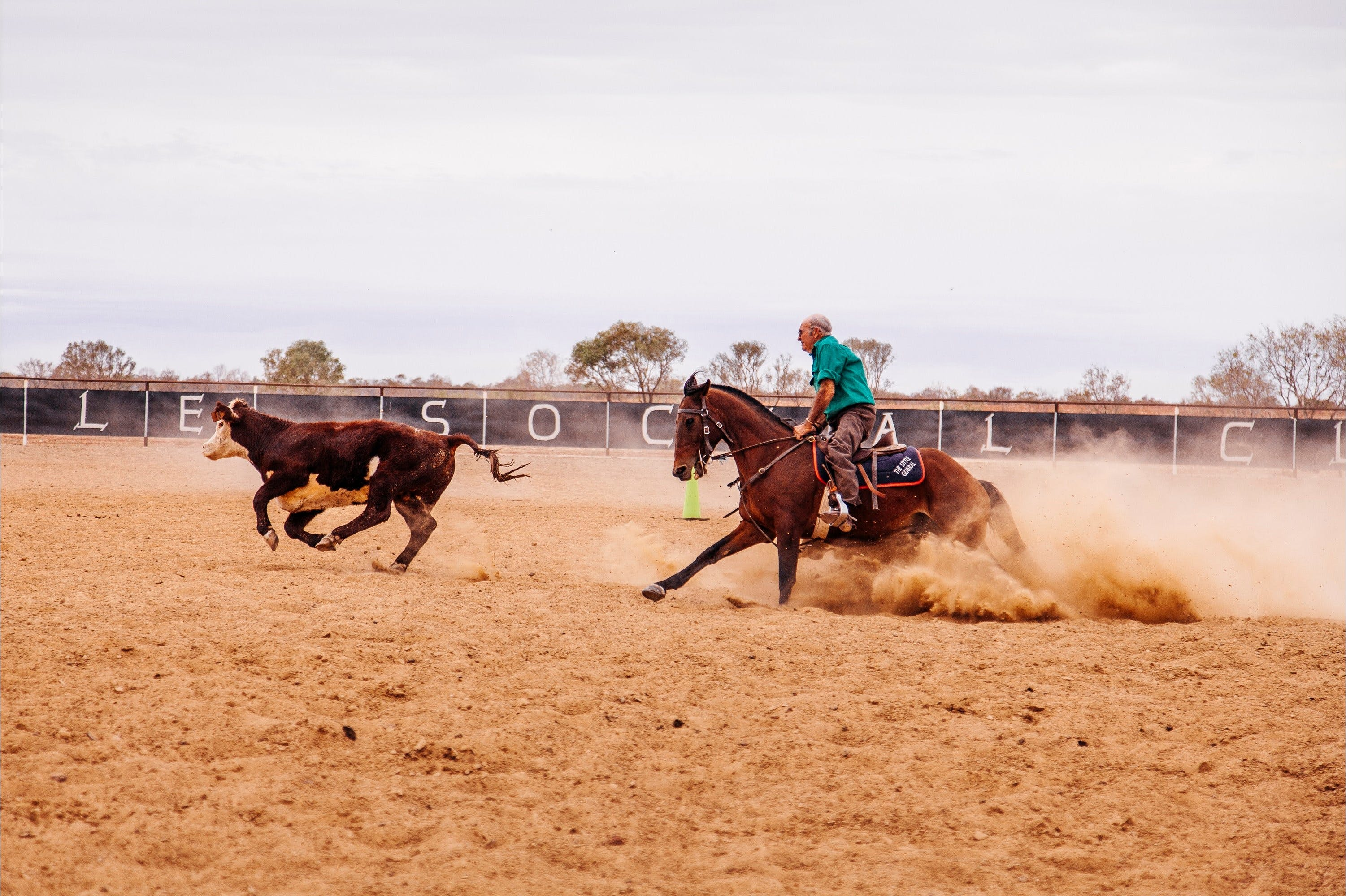 Birdsville Campdraft  Rodeo and Bronco Branding - Tourism Cairns