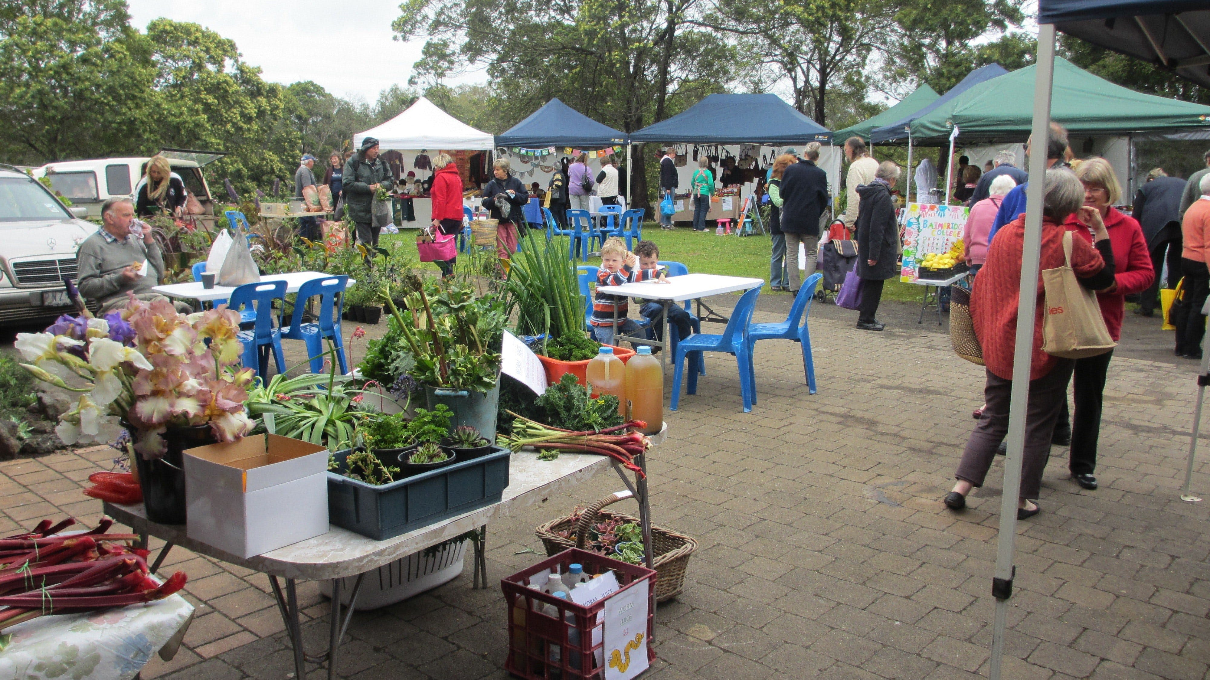 Hamilton HIRL Farmers and Craft Market - Tourism Cairns