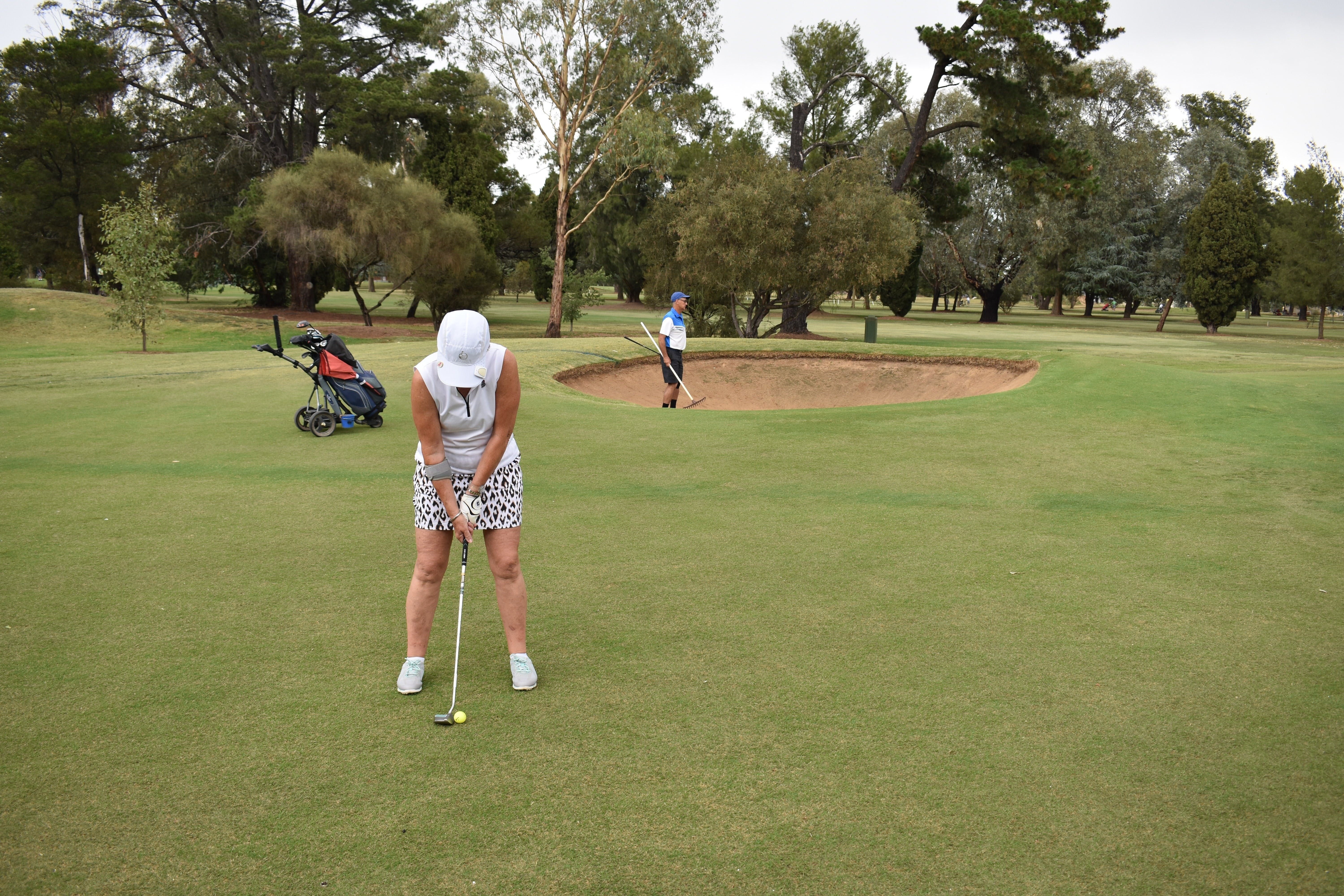 Howlong Golden Shoe Nine Hole Golf Tournament - Tourism Cairns