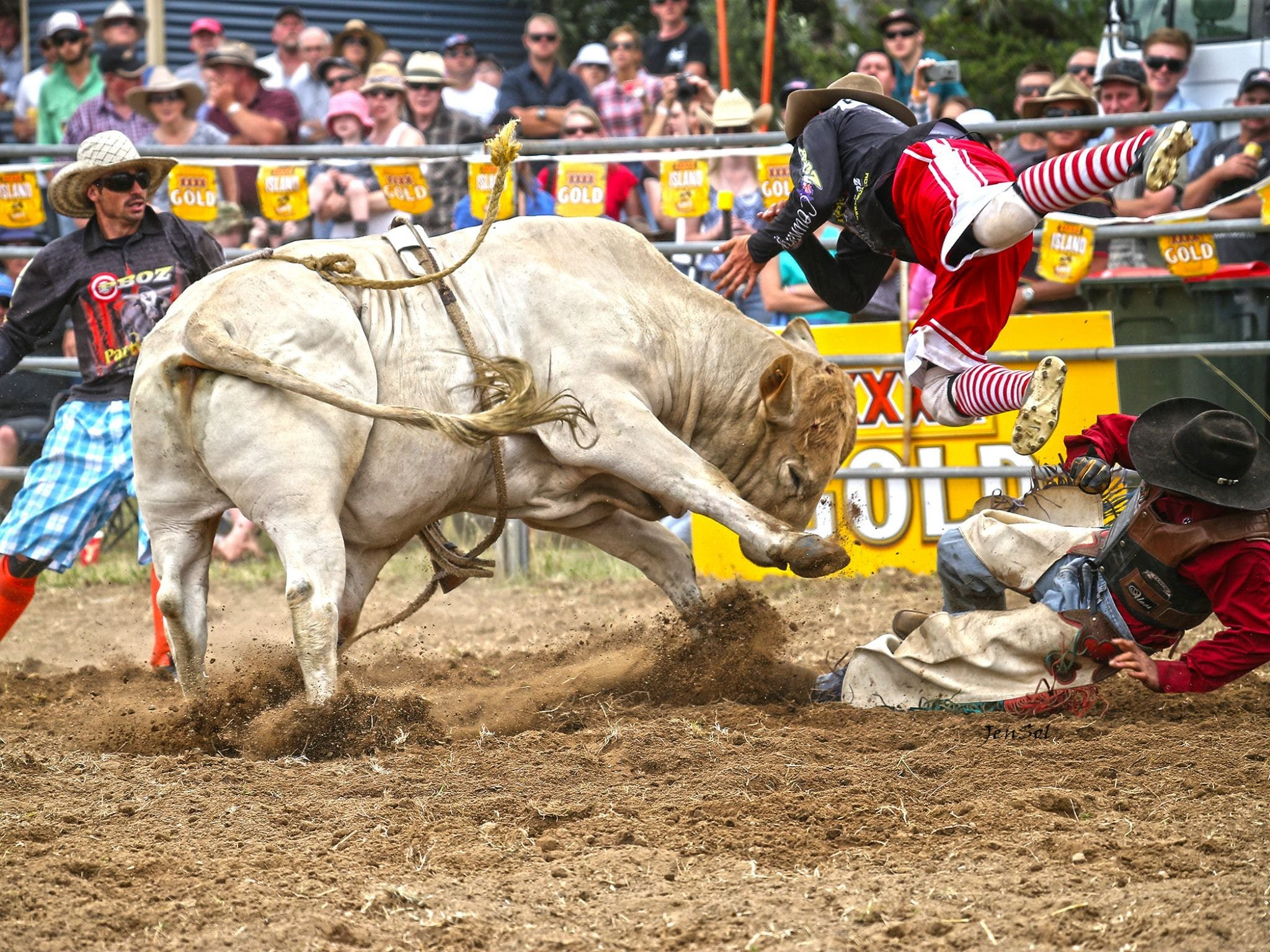 Jindabyne's Man From Snowy River Rodeo - Tourism Cairns
