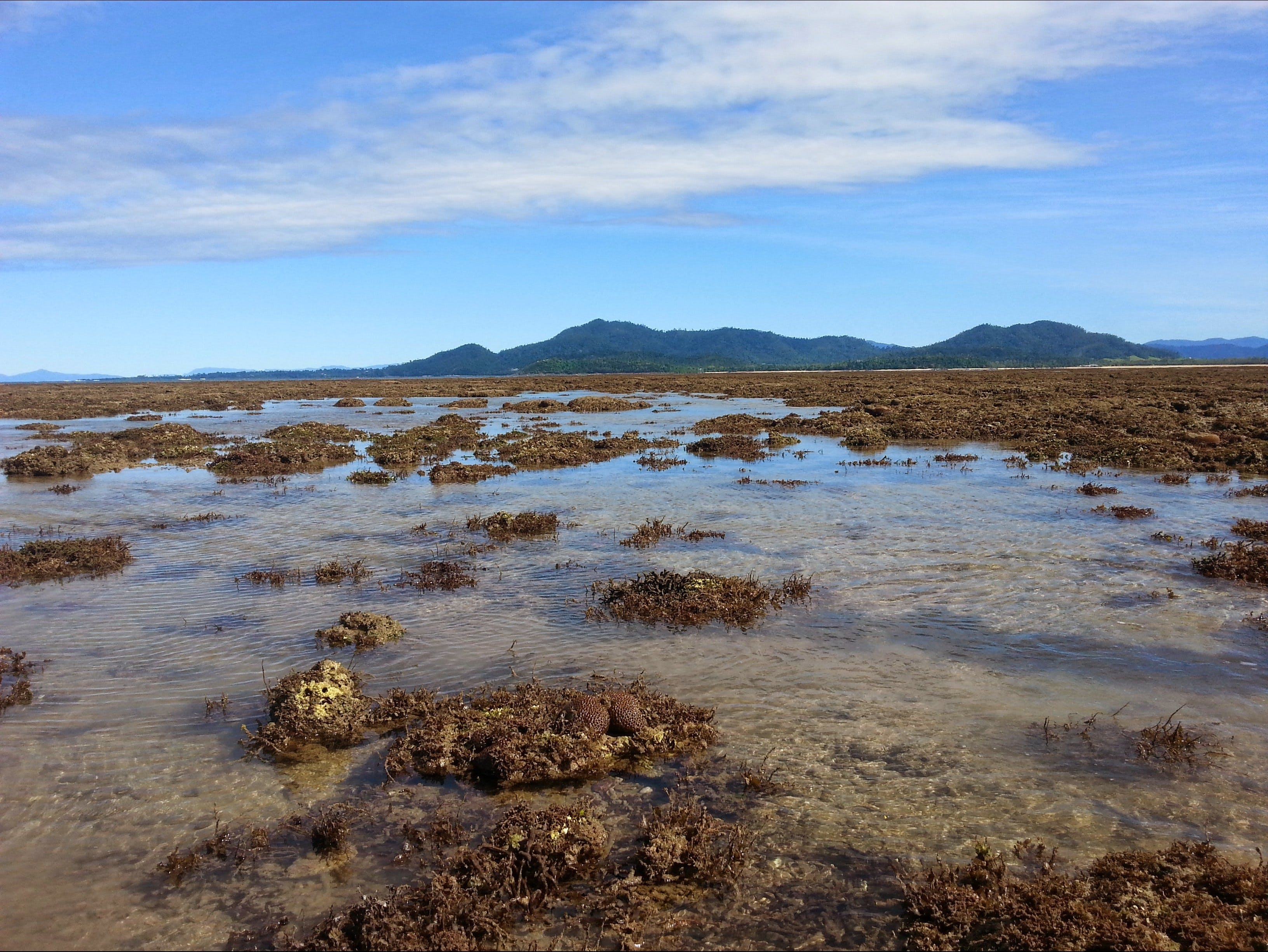 Walk to the Reef - Tourism Cairns