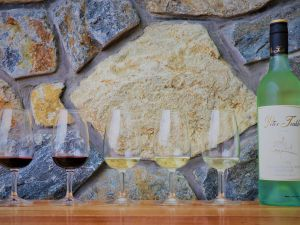 Peter Teakle Wines - Tourism Cairns