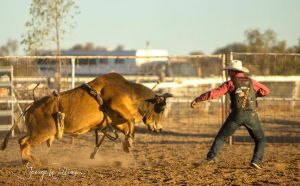 Walgett Charity Bushman's Carnival Rodeo and Campdraft - Tourism Cairns