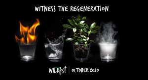 Wildfest - Annual Festival - Tourism Cairns