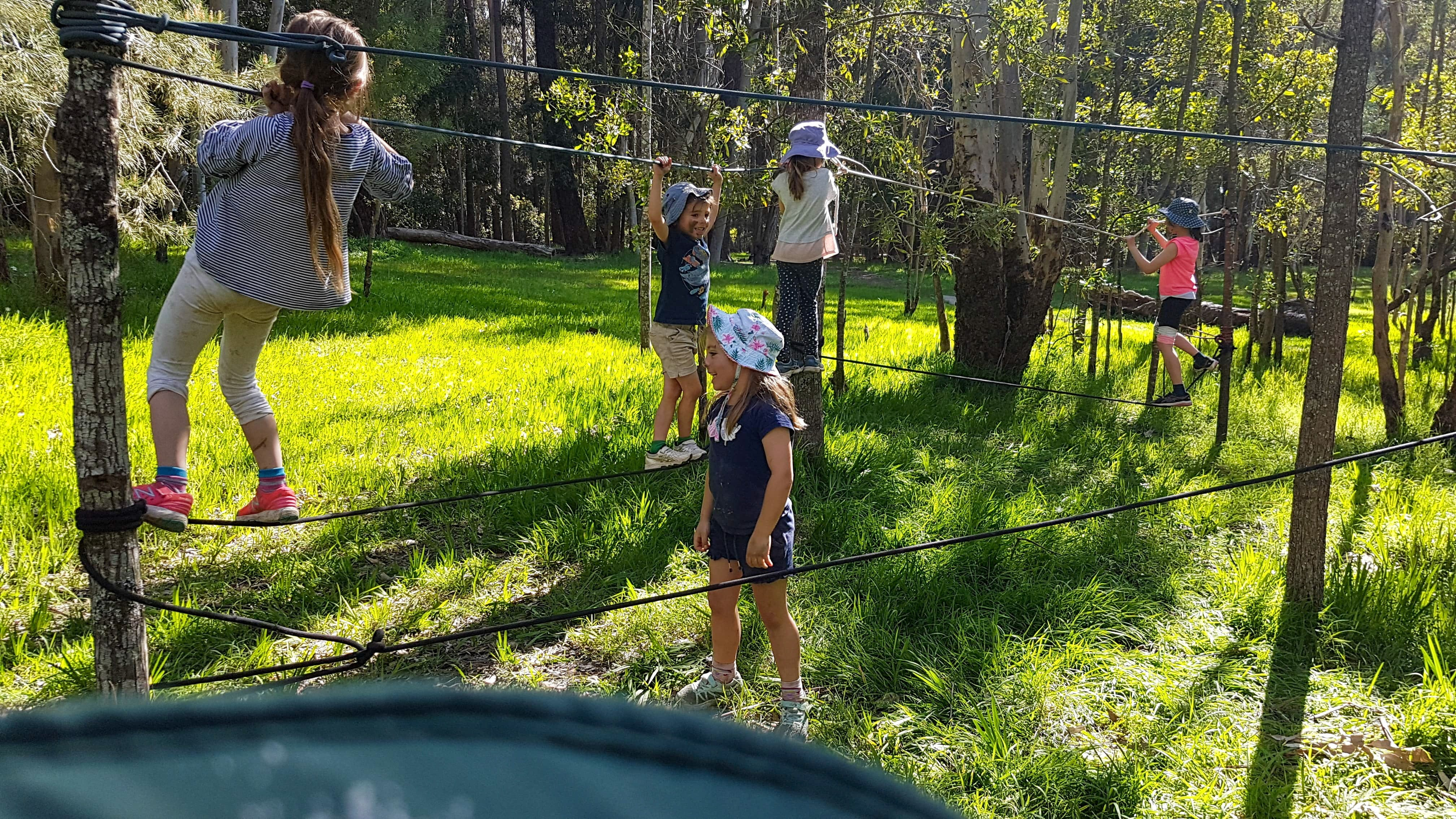 July 2020 Holidays- Forest Smores  Explore - Tourism Cairns