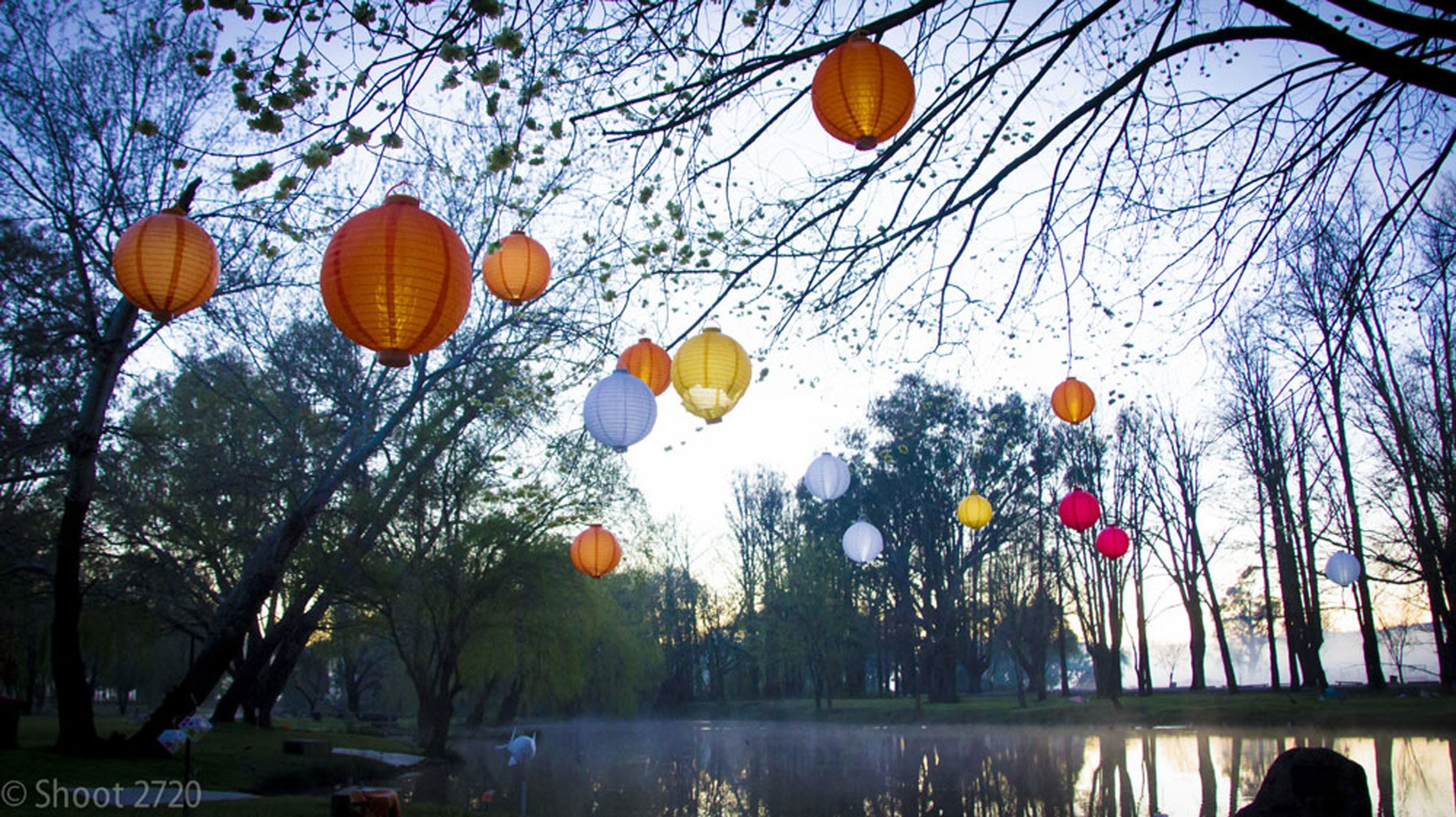 Lanterns on the Lagoon - Tourism Cairns