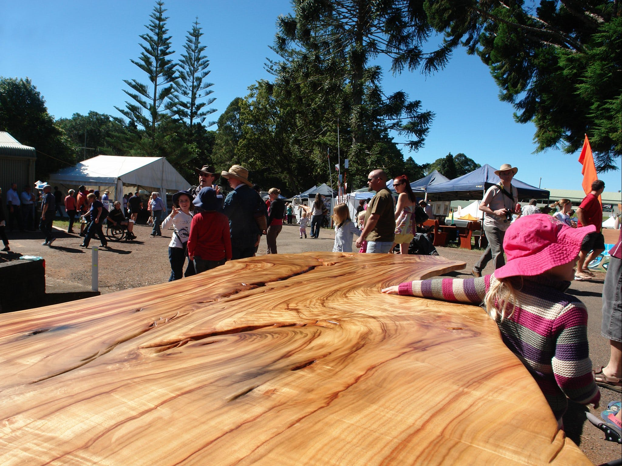 Maleny Wood Expo From Seed to Fine Furniture - Tourism Cairns