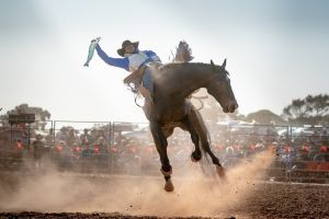 Rodeo by the Sea - Streaky Bay - Tourism Cairns