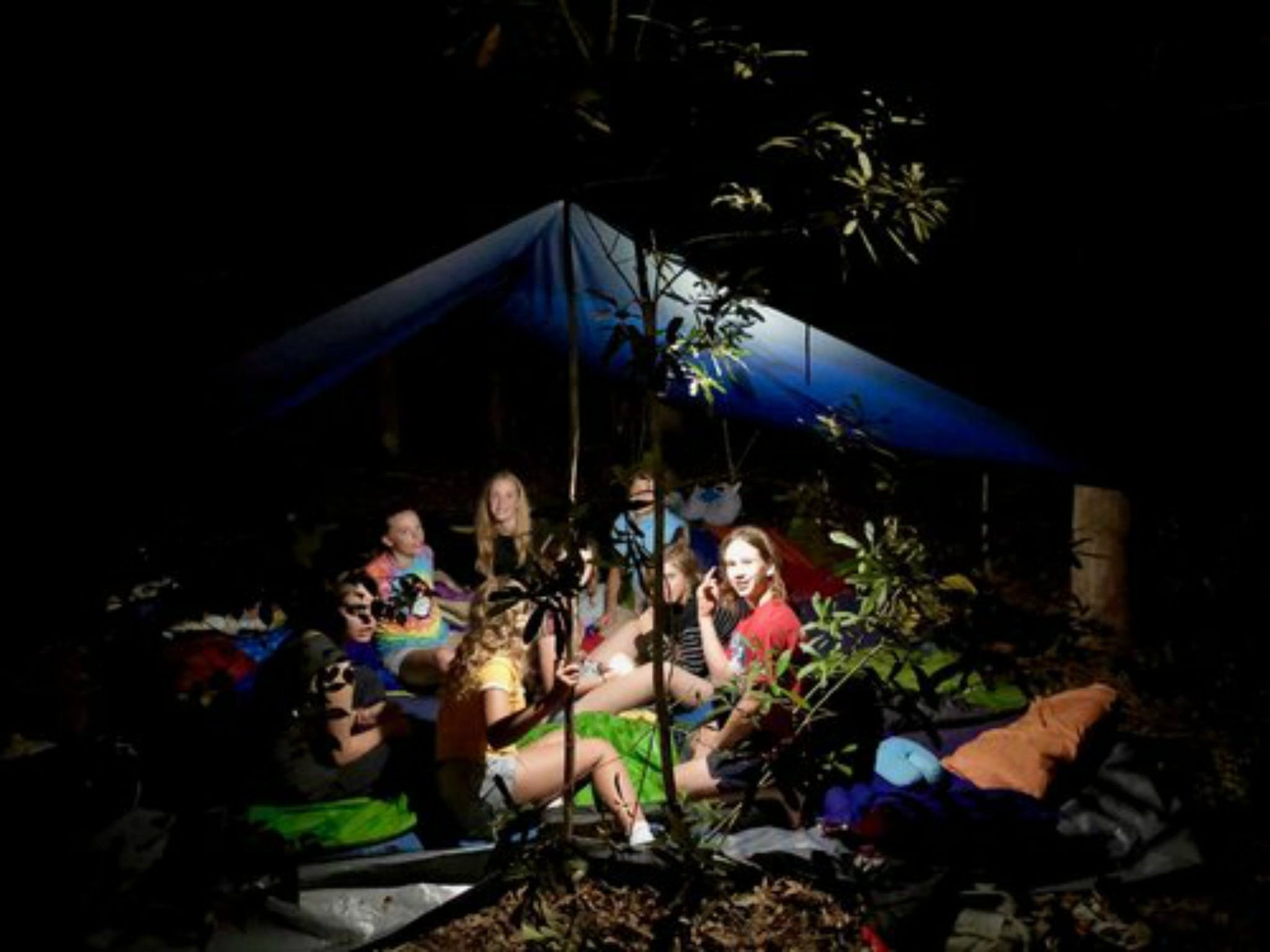 Summer  Family Nature Camp - Tourism Cairns