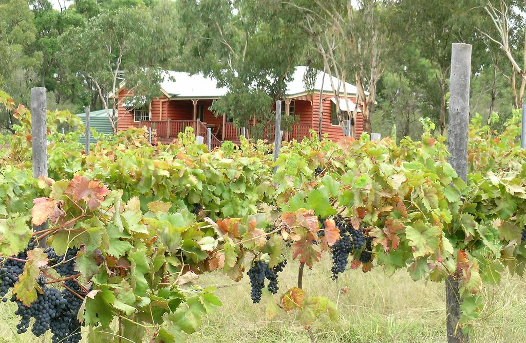 Fergies Hill Spa Cottage  Granite Ridge Wines - Tourism Cairns