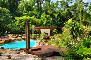 Misty Mountains Rainforest Retreat - Tourism Cairns